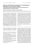 Báo cáo khoa học: Molecular and biochemical characterization ofD-phosphoglycerate dehydrogenase fromEntamoeba histolytica A unique enteric protozoan parasite that possesses both phosphorylated and nonphosphorylated serine metabolic pathways