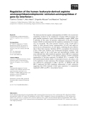 Báo cáo khoa học: Regulation of the human leukocyte-derived arginine aminopeptidase/endoplasmic reticulum-aminopeptidase 2 gene by interferon-c