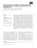 Báo cáo khoa học: Characterization of the tRNA and ribosome-dependent pppGpp-synthesis by recombinant stringent factor from Escherichia coli
