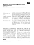 Báo cáo khoa học: New human and mouse microRNA genes found by homology search