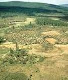 THE NUCLEAR AND AERIAL DYNAMICS OF THE TUNGUSKA EVENT