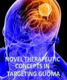 Novel Therapeutic Concepts in Targeting Glioma Edited by Faris Farassati