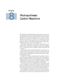 Plant physiology - Chapter  8  Photosynthesis: Carbon Reactions