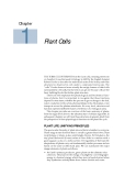 Plant physiology - Chapter  1  Plant Cells