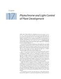 Plant physiology - Chapter  17  Phytochrome and Light Control of Plant Development