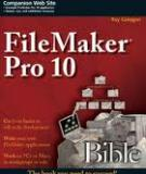 FileMaker Pro 10 application