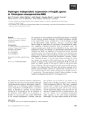Báo cáo khoa học: Hydrogen independent expression of hupSL genes in Thiocapsa roseopersicina BBS