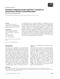 Báo cáo khoa học: Dynamin-related proteins and Pex11 proteins in peroxisome division and proliferation