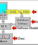 Architecture of a Database System