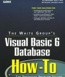 Visual Basic 6 Database How-To