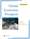 Global Economic Prospects Assuring growth over the medium term