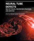 Neural Tube Defects – Role of Folate, Prevention Strategies and Genetics Edited by Kannan Laksmi Narasimhan
