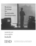 Business strategy sustainable development