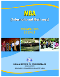 MBA (International Business): PROSPECTUS 2013-15