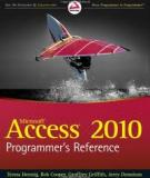 Access 2010 Programmer's Reference