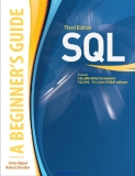 SQL A Beginner's Guide Third Edition