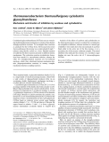 Báo cáo khoa học: Thermoanaerobacterium thermosulfurigenes cyclodextrin glycosyltransferase Mechanism and kinetics of inhibition by acarbose and cyclodextrins