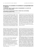 Báo cáo khoa học: Mechanisms of accumulation of arachidonate in phosphatidylinositol in yellowtail A comparative study of acylation systems of phospholipids in rat and the fish species Seriola quinqueradiata