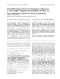 Báo cáo khoa học:  Activated transglutaminase from Streptomyces mobaraensis is processed by a tripeptidyl aminopeptidase in the final step