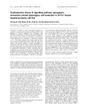 Báo cáo khoa học: Insulin/protein kinase B signalling pathway upregulates metastasis-related phenotypes and molecules in H7721 human hepatocarcinoma cell line