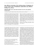 Báo cáo khoa học:  Does different orientation of the methoxy groups of ubiquinone-10 in the reaction centre of Rhodobacter sphaeroides cause different binding at QA and QB?