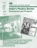 India's Poultry Sector: Development and Prospects