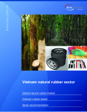 Vietnam natural rubber sector