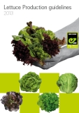 Lettuce Production guidelines  2013