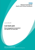 Low back pain - Early management of persistent non-specific low back pain