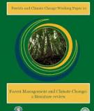Forest Management and Climate Change: a literature review