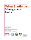 YELLOW STARTHISTLE MANAGEMENT GUIDE
