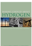 making choices about hydrogen transport issues for developing countries