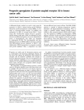 Báo cáo Y học: Progestin upregulates G-protein-coupled receptor 30 in breast cancer cells