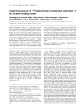 Báo cáo Y học: Engineering and use of 32P-labeled human recombinant interleukin-11 for receptor binding studies