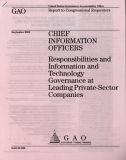 chief information officers responsibilities and information and technology