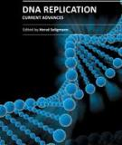 DNA Replication - Current Advances Edited by Hervé Seligmann
