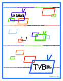 TVB LOCAL MEDIA MARKETING SOLUTIONS