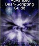 File Advanced Bash-Scripting Guide