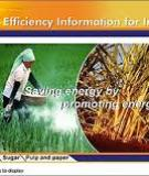 India's Pulp and Paper Industry: Productivity and Energy Efficiency