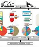ASSESSMENT OF ANAEROBIC TREATMENT OF SELECT WASTE  STREAMS IN PAPER MANUFACTURING OPERATIONS