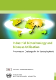 Industrial Biotechnology and  Biomass Utilisation - Prospects and Challenges for the Developing World