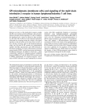 Báo cáo Y học:  GPI-microdomains (membrane rafts) and signaling of the multi-chain interleukin-2 receptor in human lymphoma/leukemia T cell lines