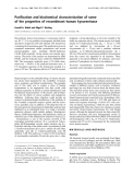 Báo cáo Y học:  Purification and biochemical characterization of some of the properties of recombinant human kynureninase