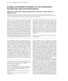 Báo cáo Y học: Ontogeny and subcellular localization of rat liver mitochondrial branched chain amino-acid aminotransferase