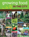 Growing food in the city