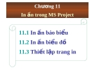 In ấn trong MS Projec