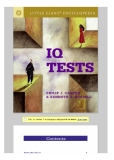 IQ Test (little giant)