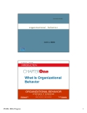 Chapter 1: What Is Organizational Behavior