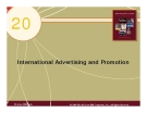 Chapter 20: International Advertising and Promotion