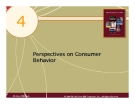 4 Perspectives on Consumer Behavior  McGraw-Hill/Irwin  © 2004 The McGraw-Hill Companies, Inc., All Rights Reserved.  .Consumer Behavior  The process and activities people engage in when searching for, selecting, purchasing, using, evaluating, and disposi